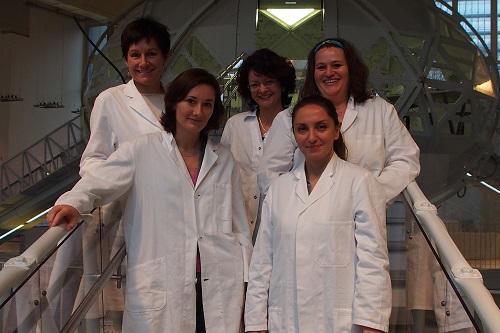 Medizinübersetzerinnen auf Fortbildung
